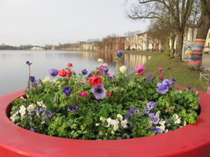 Blumenschale im Vordergrund, Teich im Hintergrund